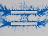 Sulla bandiera israeliana,  olio su tela,  cm. 70x100,  2009