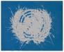 Sulla bandiera dell'O.N.U.,  olio su tela,  cm. 70x100,  2009
