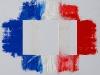 Sulla bandiera francese,  olio su tela,  cm. 70x100,  2009