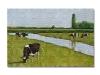 Mucche al pascolo, olio su tela, cm. 40x60 2019