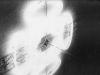 Fantasma (particolare),   neon a intermittenza, specchi, spazzatura,  dimensioni variabili,  1995, Quartiere militare borbonico di Casagiove (CS)