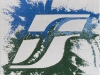 FS,  olio su tela,  cm. 30x20,  2008