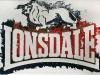 Londsdale,  olio su tela,  cm. 30x20,  2008