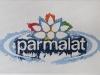 Parmalat,  olio su tela,  cm. 20x30,  2008