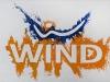Wind,  olio su tela,  cm. 20x30,  2008